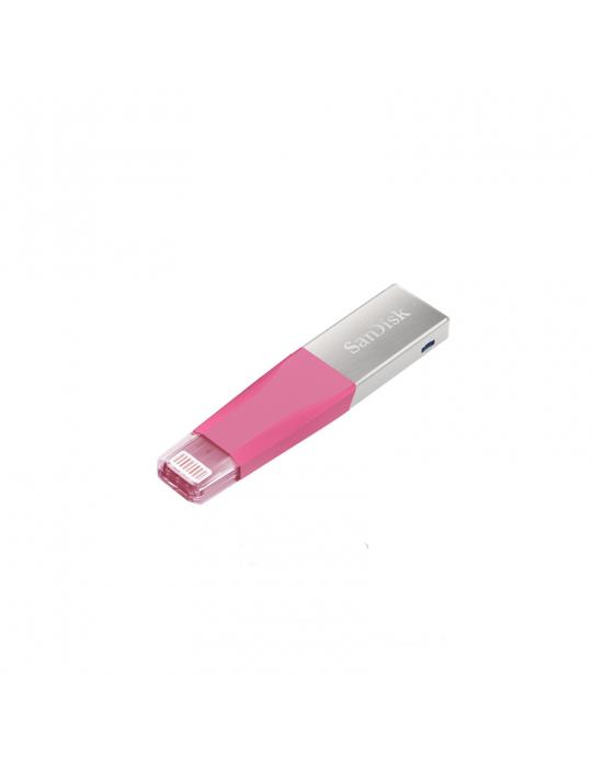 Flash Memory - Flash Memory 256GB SanDisk iXpand MINI (iPhone)
